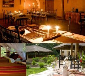 primate lodge -kibale