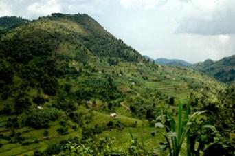 rwenzori-mountain