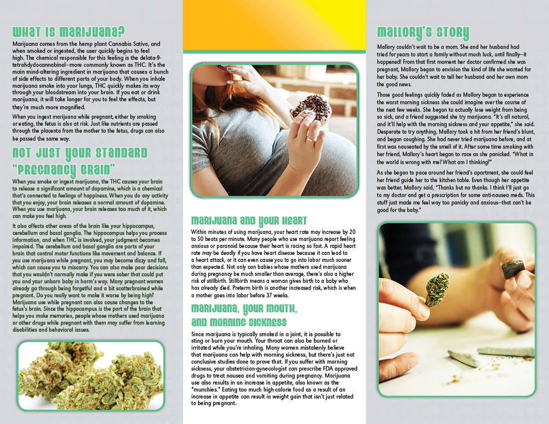 Cause Amp Effect Pregnancy Amp