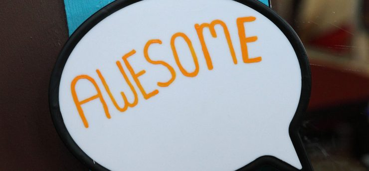 What Is Your Definition of Awesome?