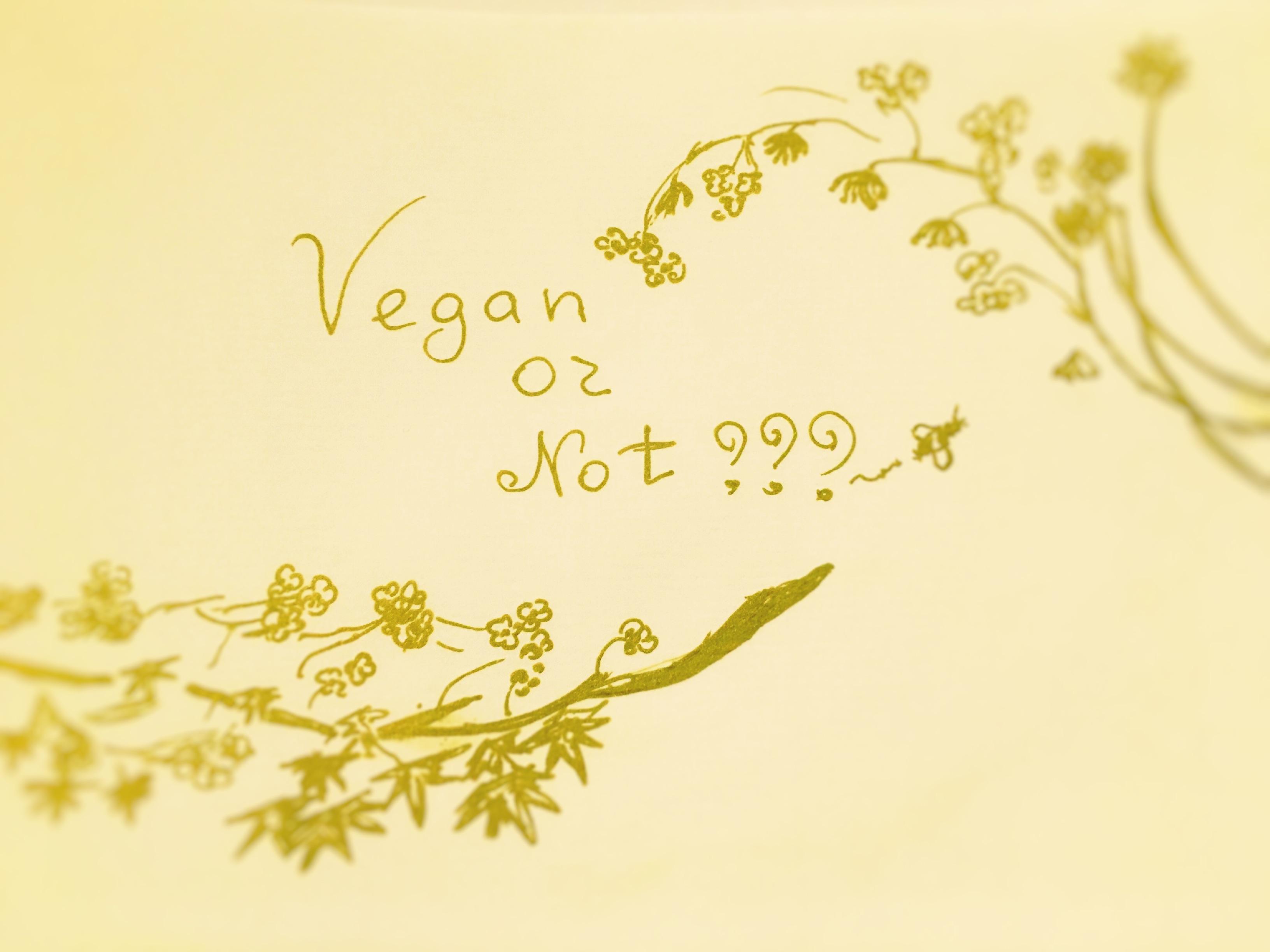 Honey: Vegan or Not???