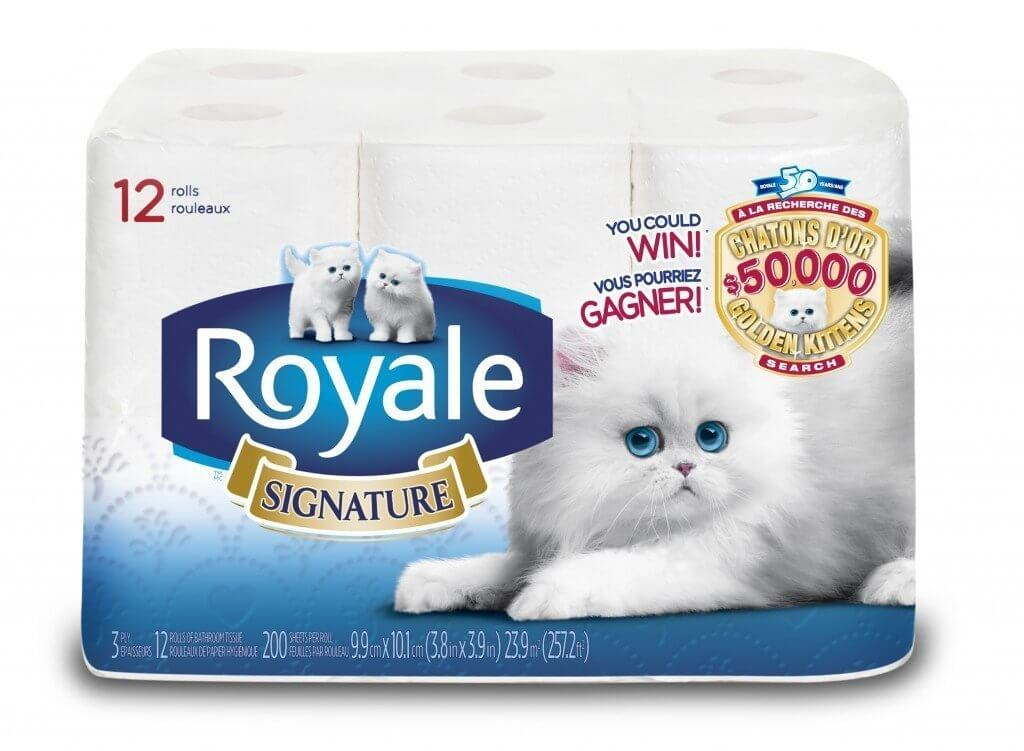 High Res - New Kitten Packaging ROYALE