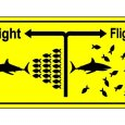 "fight-or-flight response, as defined by Wikipedia, is ""a physiological reaction that occurs in response to a perceived harmful event, attack, or threat to survival""."