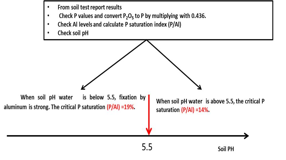 soil profile diagram of michigan oxygen shell understanding the factors controlling phosphorus availability for showing how to calculate p saturation index from test reports