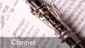 clarinet lessons in minneapolis saint paul Minnesota