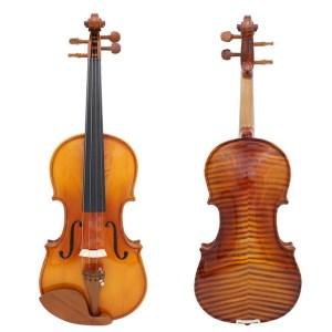 Pikanni violin
