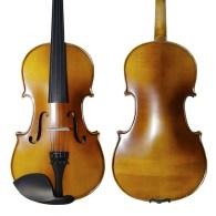 Strumenti a corde violin 2000