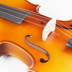 Strumenti a corde 2000 violino