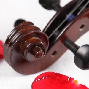 Strumenti a corde 2500 violin