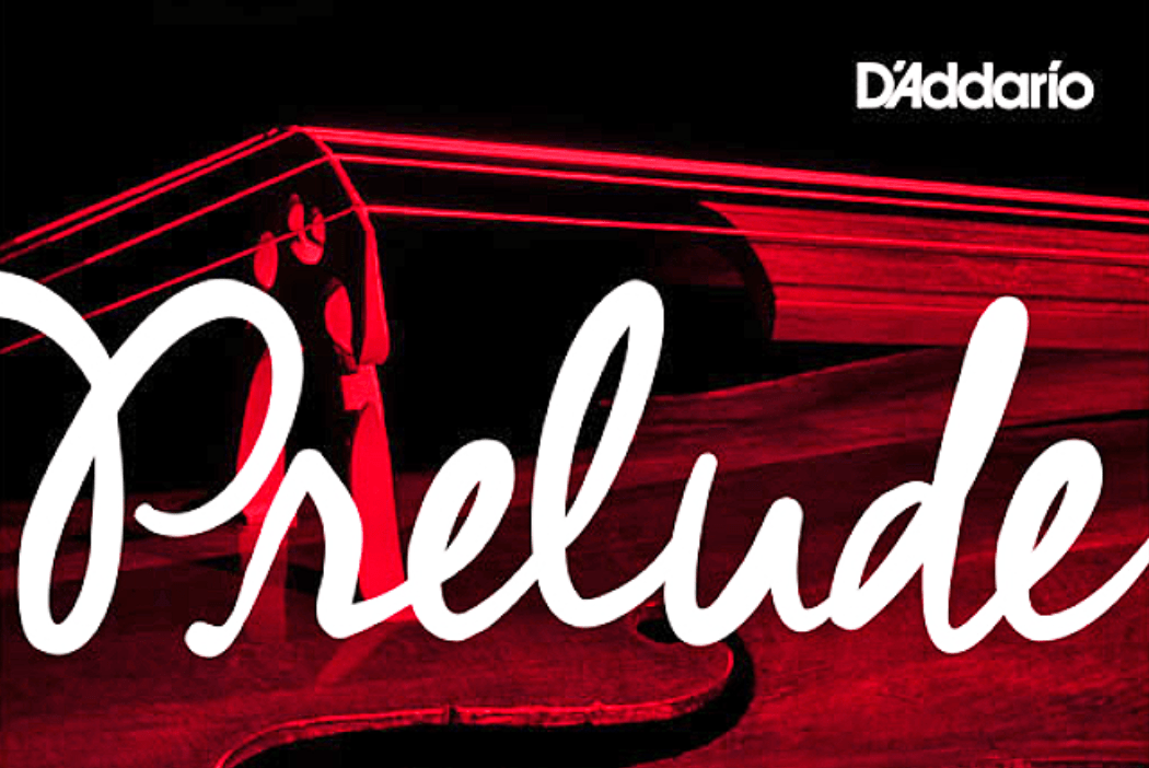 Prelude Strings by D'Addario