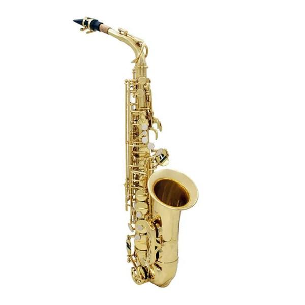 Student Series Saxophone