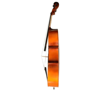 Strumenti a Corde Cello 106
