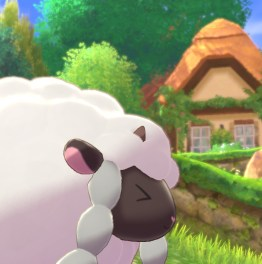 Wooloo Adventure: Pokemon Sword Start!