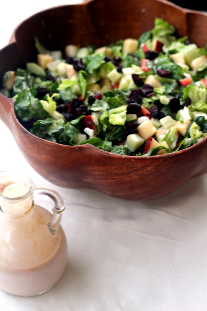Cranberry, Apple Salad with Yogurt Dressing