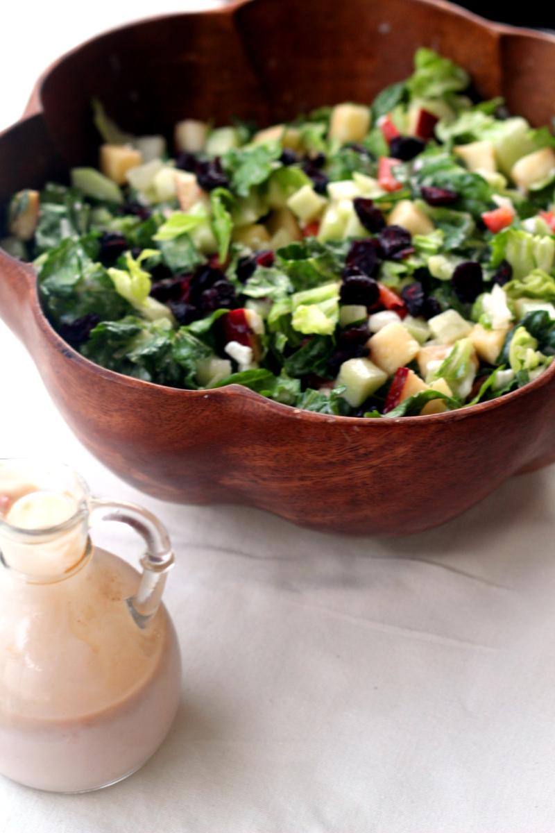 Cranberry, Apple Salad with Yogurt Dressing