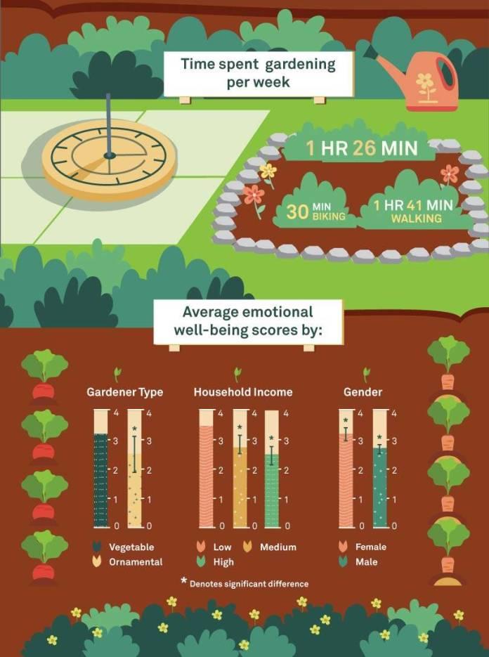 Time spent gardnening per week/1HR 26 MIN/30 MIN BIKING/1HR 41 MIN Walking/Average emotional scores by (bar graph): Gardener type vegetable vs ornamental/Household Income: low, medium, high/Gender: Male v. female
