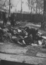 Zločin Italijana u Crnoj Gori 1941.