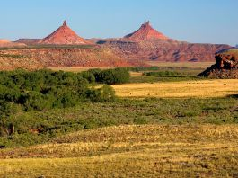 A landscape photo of Bears Ears National Monument.