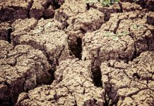 A photo of dry, cracked soil.