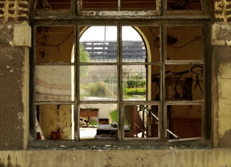 photograph within abandoned building looking out