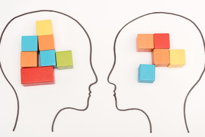 image of two heads with distinct collections of colored cubes