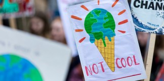 "photograph of climate protest signs (""Not Cool"")"