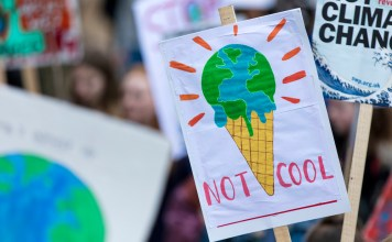 """photograph of climate protest signs (""""Not Cool"""")"""