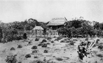 black and white photograph of aboriginal dwelling