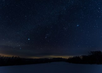 photograph of starry night in the woods