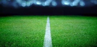image of lined field under bright lights
