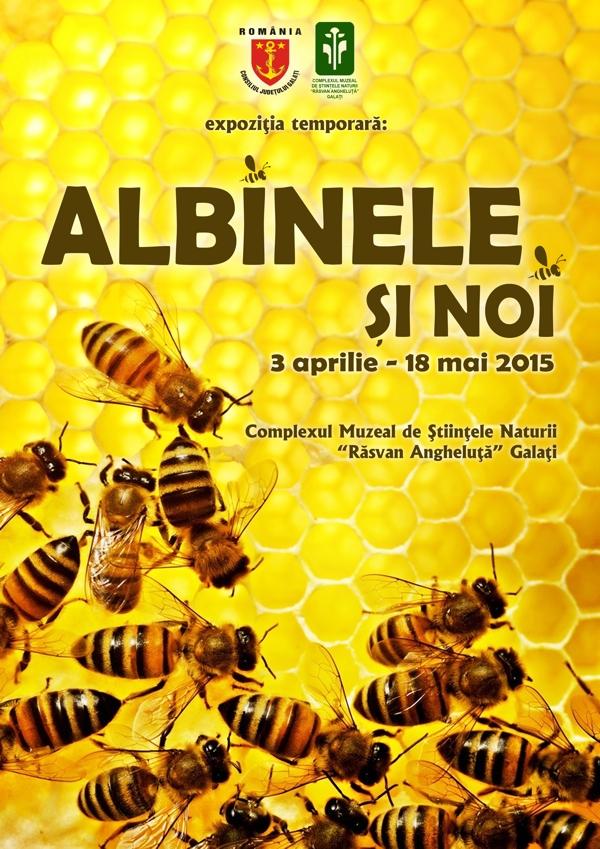 albinele si noi complexul muzeal galati
