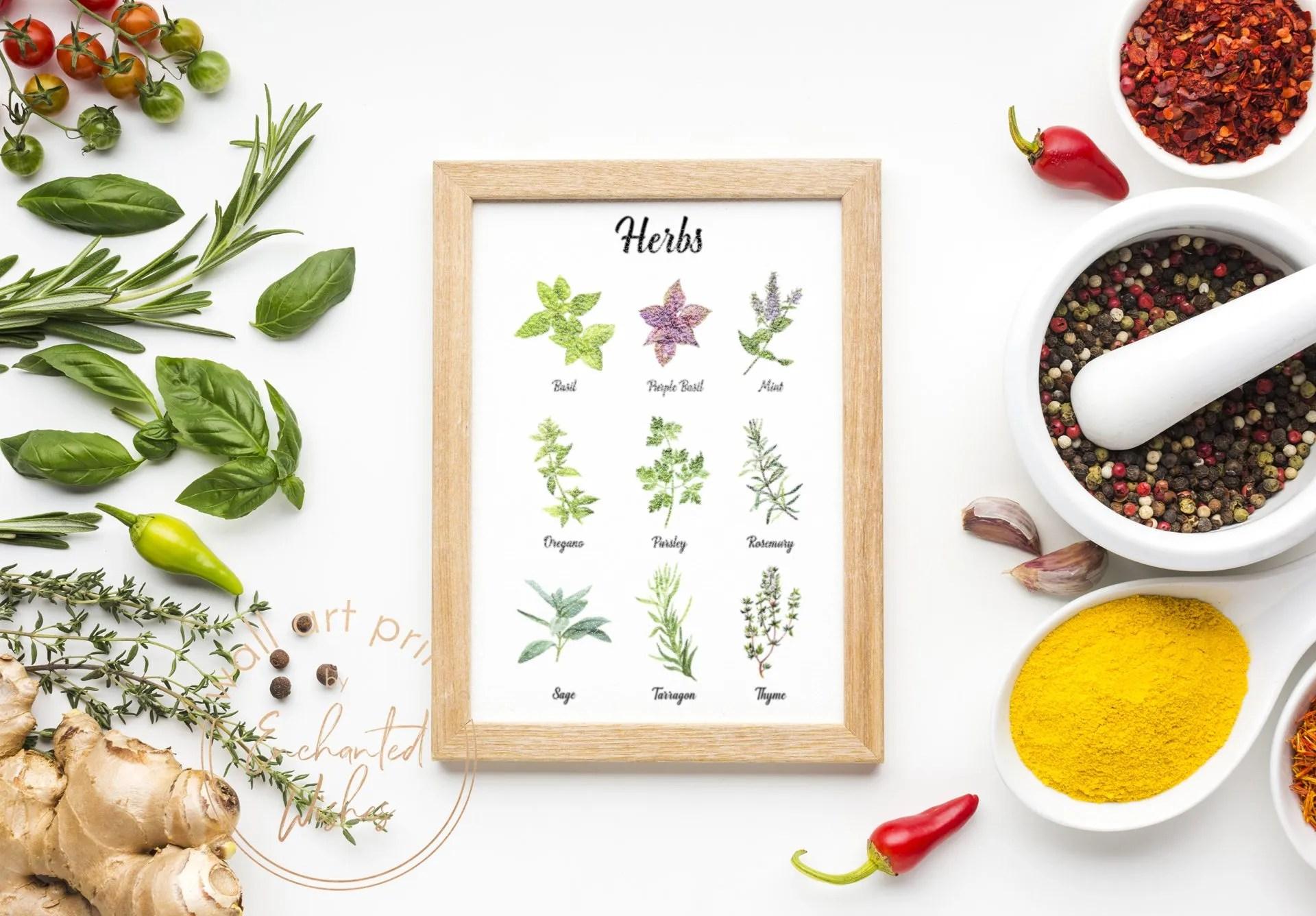 Herbs Color Print
