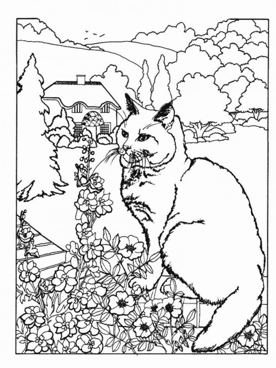 7 Best Images of Free Printable Adult Coloring Pages