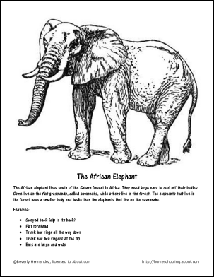 9 Best Images of Printable Worksheets Elephant Theme