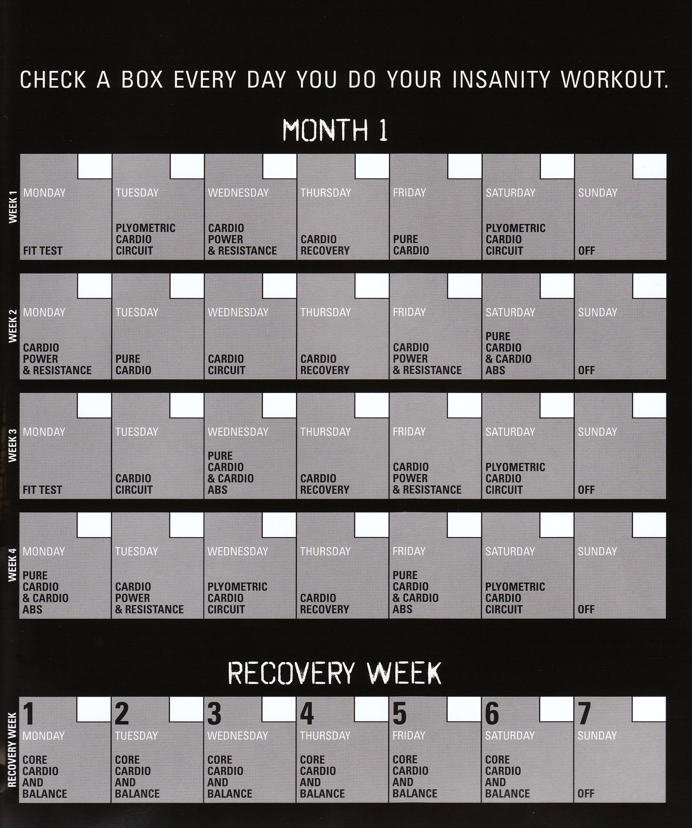 Worksheets P90x Workout
