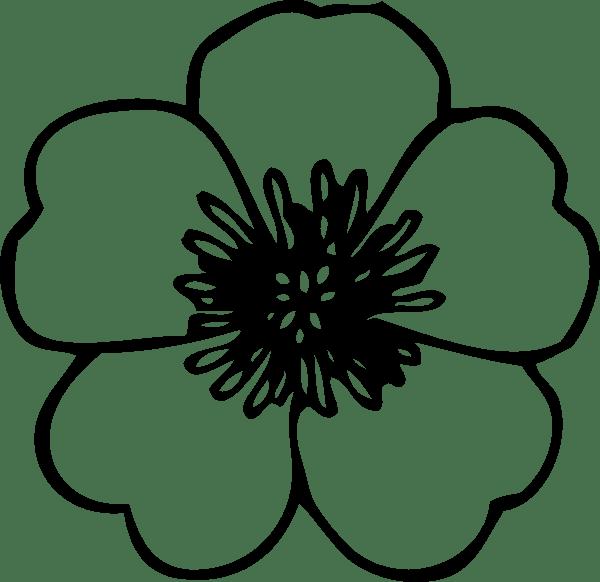 8 Best Printable Poppy Flower Stencil Patterns
