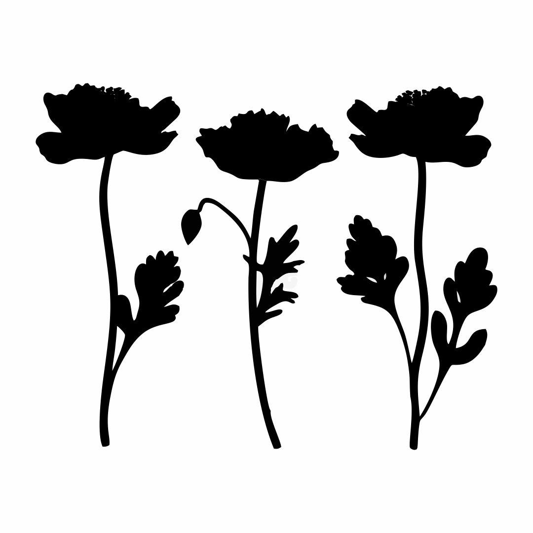 12 Best Printable Poppy Flower Stencil Patterns