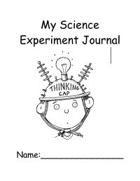 Science Observation Worksheet For Kindergarten - free ...