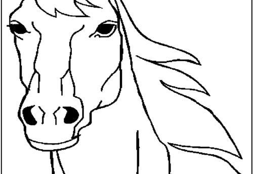 Horse Face Coloring Printable Coloring Pages