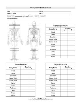 5 Best Images of Printable Chiropractic Forms