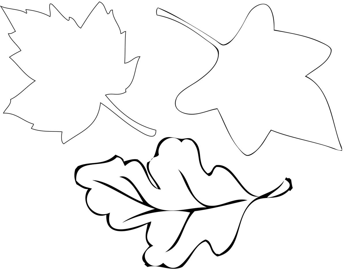 6 Best Images Of Leaf Tracers Printable