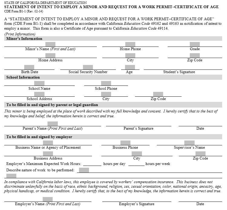 13 Free Sample Work Permit Certificate Templates – Printable Samples