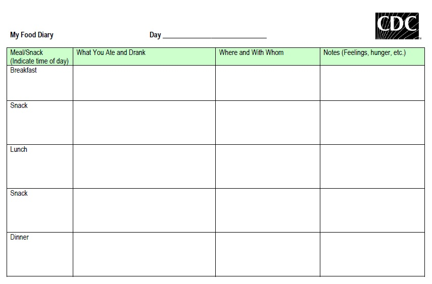 Free Sample Food Log Templates  Printable Samples