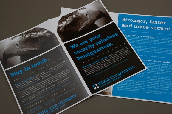 10 Free Sample Security Brochure Templates Printable Samples