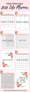 2018 FREE PRINTABLE FLORAL PINK LIFE PLANNER | CALENDAR, MONTHLY AND WEEKLY PLANNER, HABIT TRACKER, JOURNAL