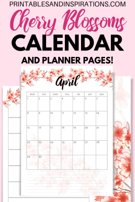 Free Printable Cherry Blossoms Calendar For 2019 2020 And Planner Pages! With free weekly planners, dot grid paper and free sakura planner stickers. Free PDF download now! #freeprintable #printablesandinspirations #diyplanner #plannerstickers #bulletjournal