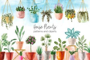 house plants clipart