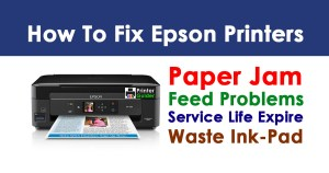 How to Fix Epson Printer Paper Jam and Feed Problems