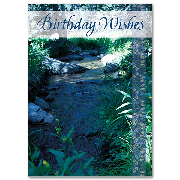 Birthday Wishes Birthday Card