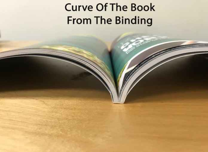 Open perfect bound book showing the curve that creates the gutter